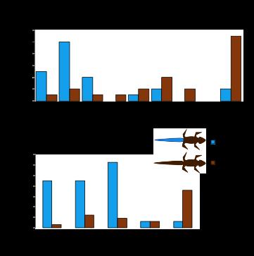 Bateman, Fleming, Rolek 2014 Bite me: Blue tails as a 'risky-decoy' defense tactic for lizards Current Zoology 60, 333-337