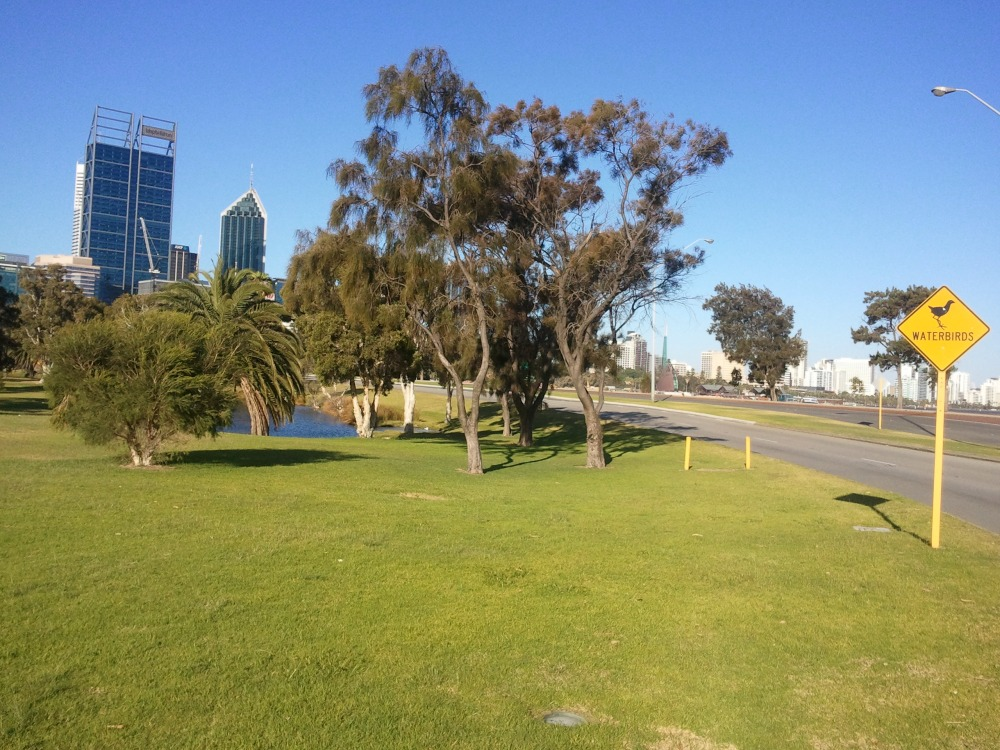 Downtown Perth warns drivers of road hazards